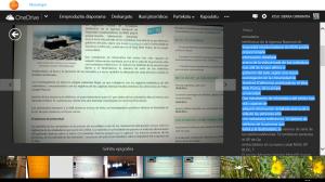 Captura de pantalla (4)